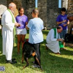 Blessing Of The Animals Service Bermuda, October 5 2014-34