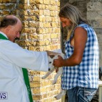 Blessing Of The Animals Service Bermuda, October 5 2014-39