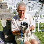 Blessing Of The Animals Service Bermuda, October 5 2014-7