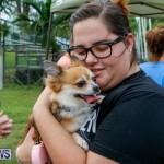SPCA Fun Fair Bermuda, October 11 2014-24