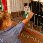 SPCA Fun Fair Bermuda, October 11 2014-57