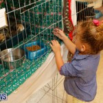 SPCA Fun Fair Bermuda, October 11 2014-58