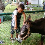 SPCA Fun Fair Bermuda, October 11 2014-63