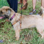 SPCA Fun Fair Bermuda, October 11 2014-68