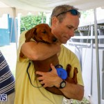 SPCA Fun Fair Bermuda, October 11 2014-69