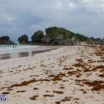 Tropical Storm Fay Bermuda, October 11 2014-6