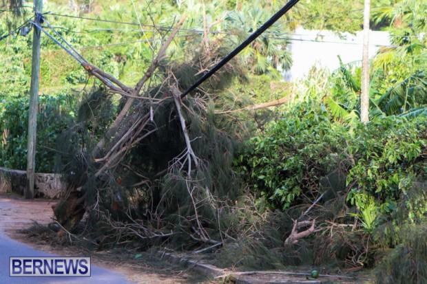Tropical-Storm-Fay-Bermuda-October-12-pole 2
