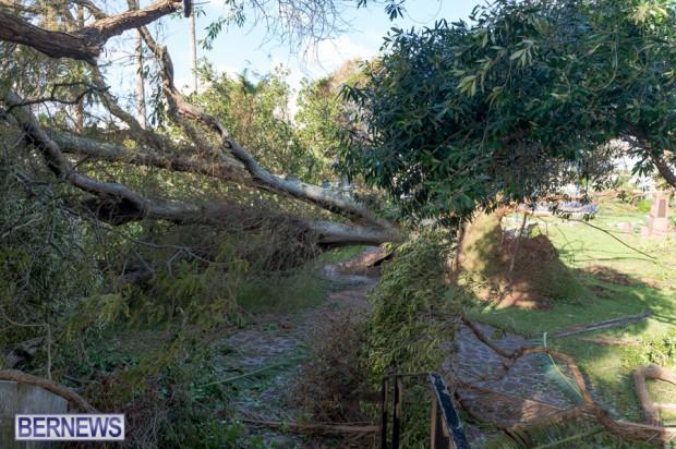 Victoria Park Bermuda after Storm Fay 2014 (1)