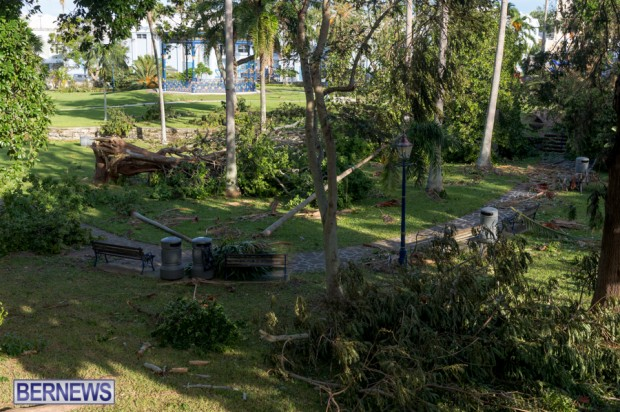 Victoria Park Bermuda after Storm Fay 2014 (10)