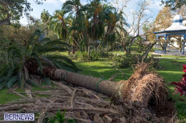Victoria Park Bermuda after Storm Fay 2014 (6)