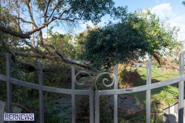 Victoria Park Bermuda after Storm Fay 2014 (9)