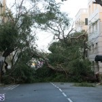 hurricane-gonzalo-bermuda35