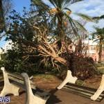 hurricane-gonzalo-bermuda76