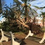 hurricane-gonzalo-bermuda85