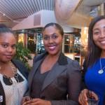Bermuda Bar Association Reception 2014 (6)