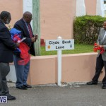 Clyde Best Lane Bermuda, November 1 2014-22