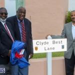 Clyde Best Lane Bermuda, November 1 2014-25
