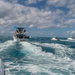Dr Neul Burnie's burial at sea (36)