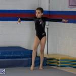 Gymnastics Bermuda, November 8 2014-1