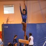 Gymnastics Bermuda, November 8 2014-10