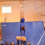 Gymnastics Bermuda, November 8 2014-12