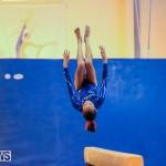 Gymnastics Bermuda, November 8 2014-15