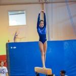 Gymnastics Bermuda, November 8 2014-20