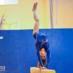 Gymnastics Bermuda, November 8 2014-21