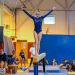 Gymnastics Bermuda, November 8 2014-22
