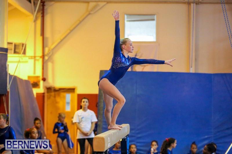 twistars gymnastics meet 2014