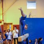 Gymnastics Bermuda, November 8 2014-25