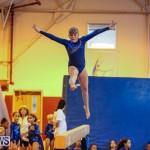 Gymnastics Bermuda, November 8 2014-26