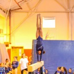 Gymnastics Bermuda, November 8 2014-28
