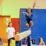 Gymnastics Bermuda, November 8 2014-29