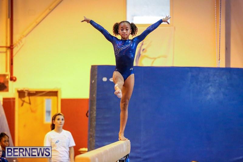 gymnastics legends international meet results 2014