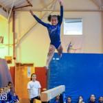 Gymnastics Bermuda, November 8 2014-32