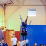Gymnastics Bermuda, November 8 2014-35