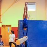 Gymnastics Bermuda, November 8 2014-36