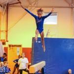 Gymnastics Bermuda, November 8 2014-38