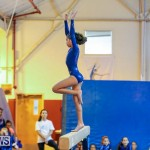 Gymnastics Bermuda, November 8 2014-39