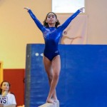 Gymnastics Bermuda, November 8 2014-41