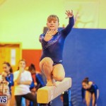 Gymnastics Bermuda, November 8 2014-43