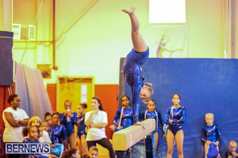 leatherstocking gymnastics meet 2014 results