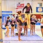 Gymnastics Bermuda, November 8 2014-45