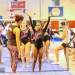 Gymnastics Bermuda, November 8 2014-47