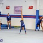 Gymnastics Bermuda, November 8 2014-48