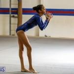 Gymnastics Bermuda, November 8 2014-51