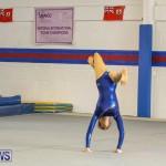 Gymnastics Bermuda, November 8 2014-52