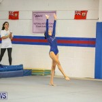 Gymnastics Bermuda, November 8 2014-53