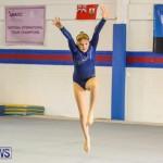 Gymnastics Bermuda, November 8 2014-59